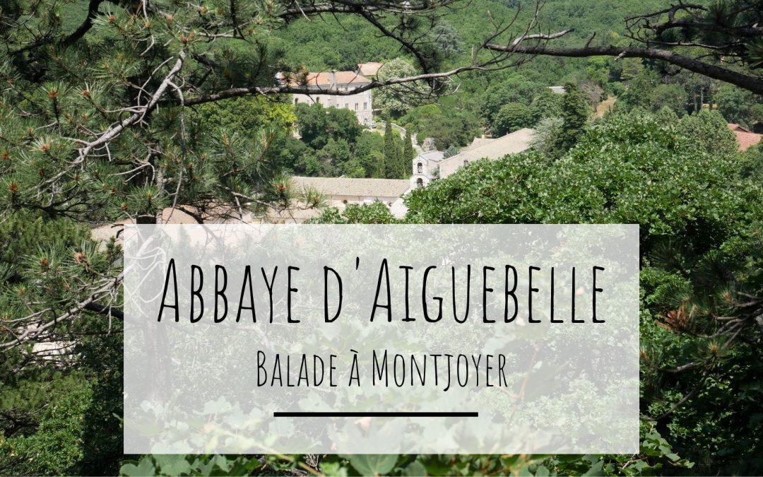 Balade à l'abbaye d'Aiguebelle