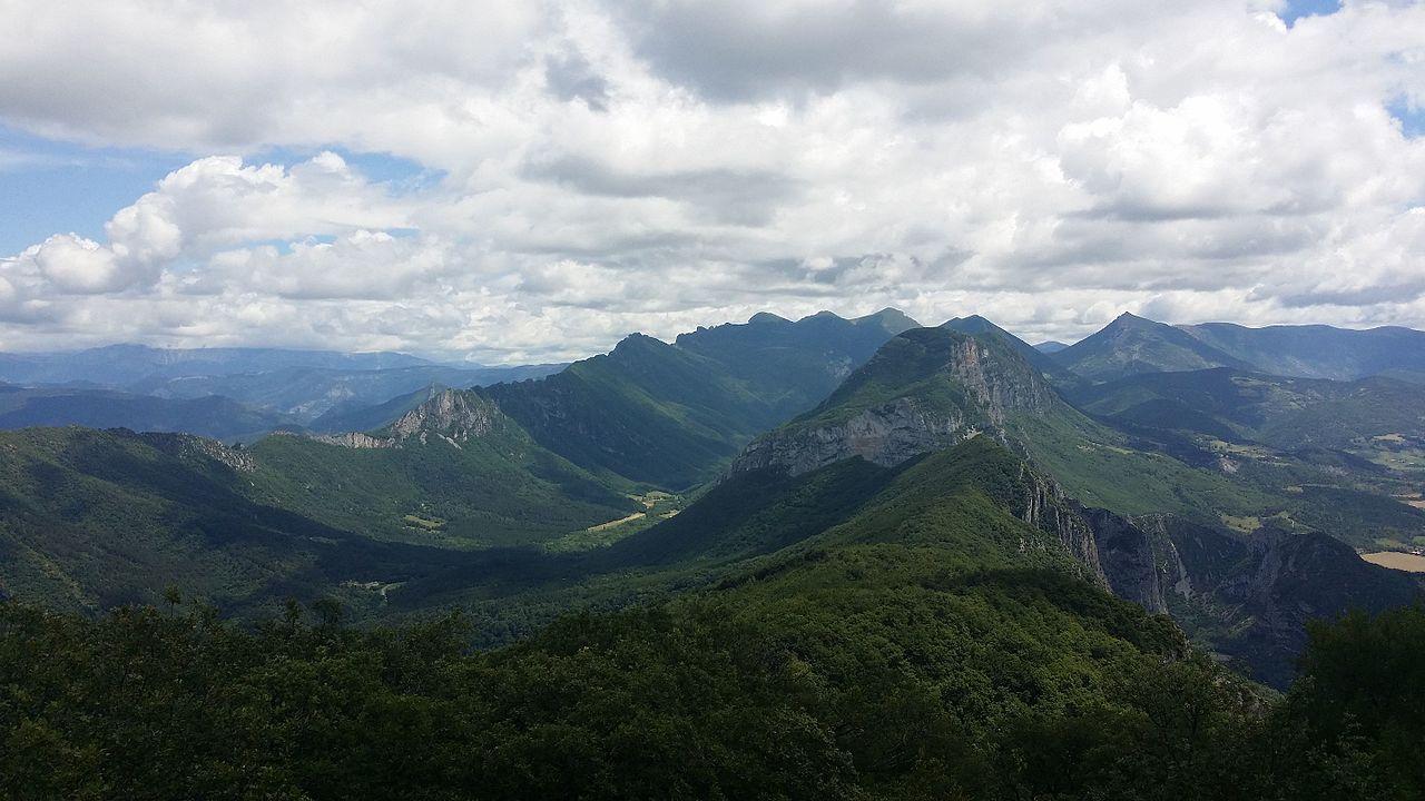 Lieux à découvrir autour de Montélimar : la forêt de Saoû
