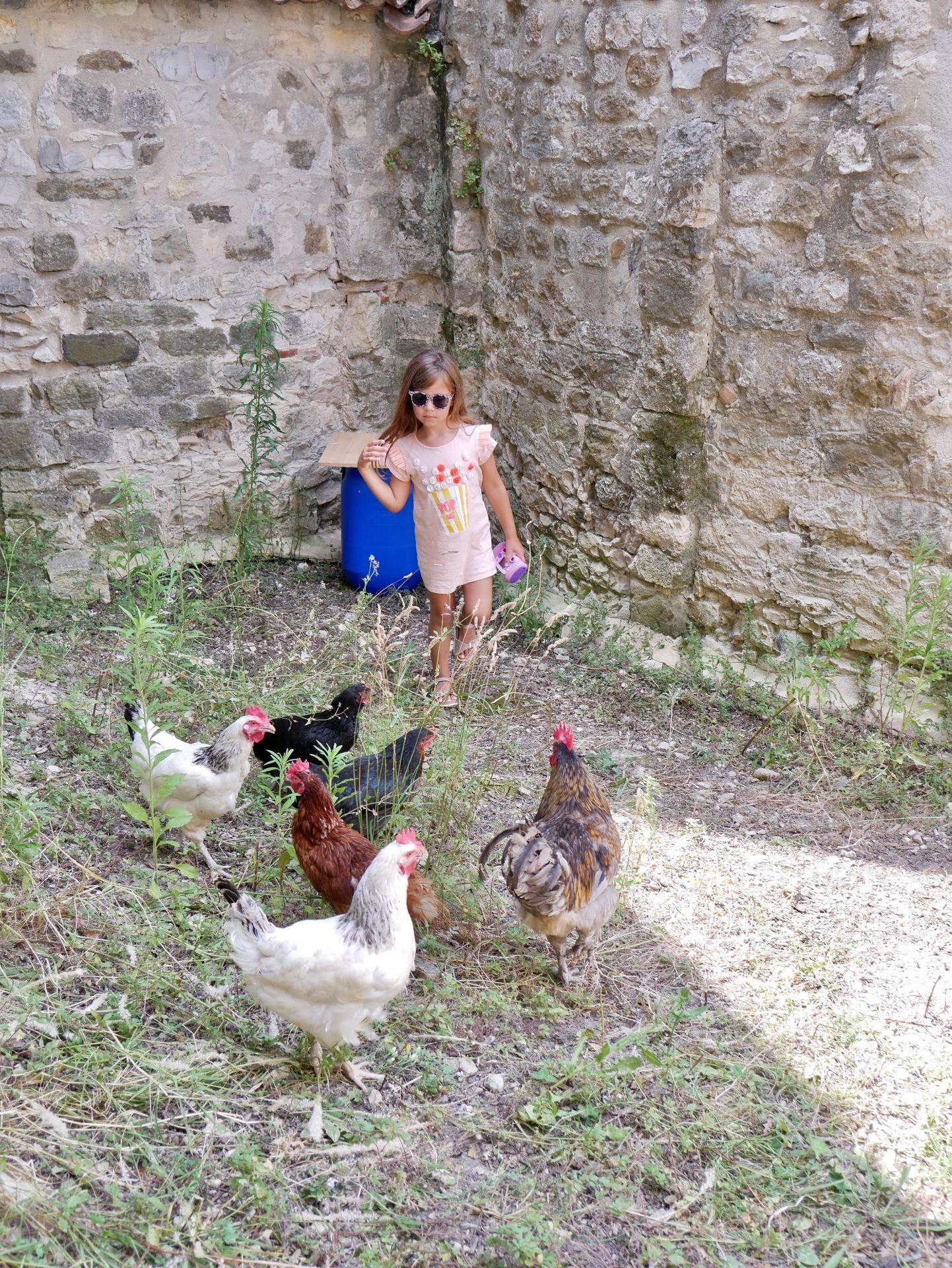 Sortie en famille dans la Drôme : nouveaux résidents du château de Montélimar