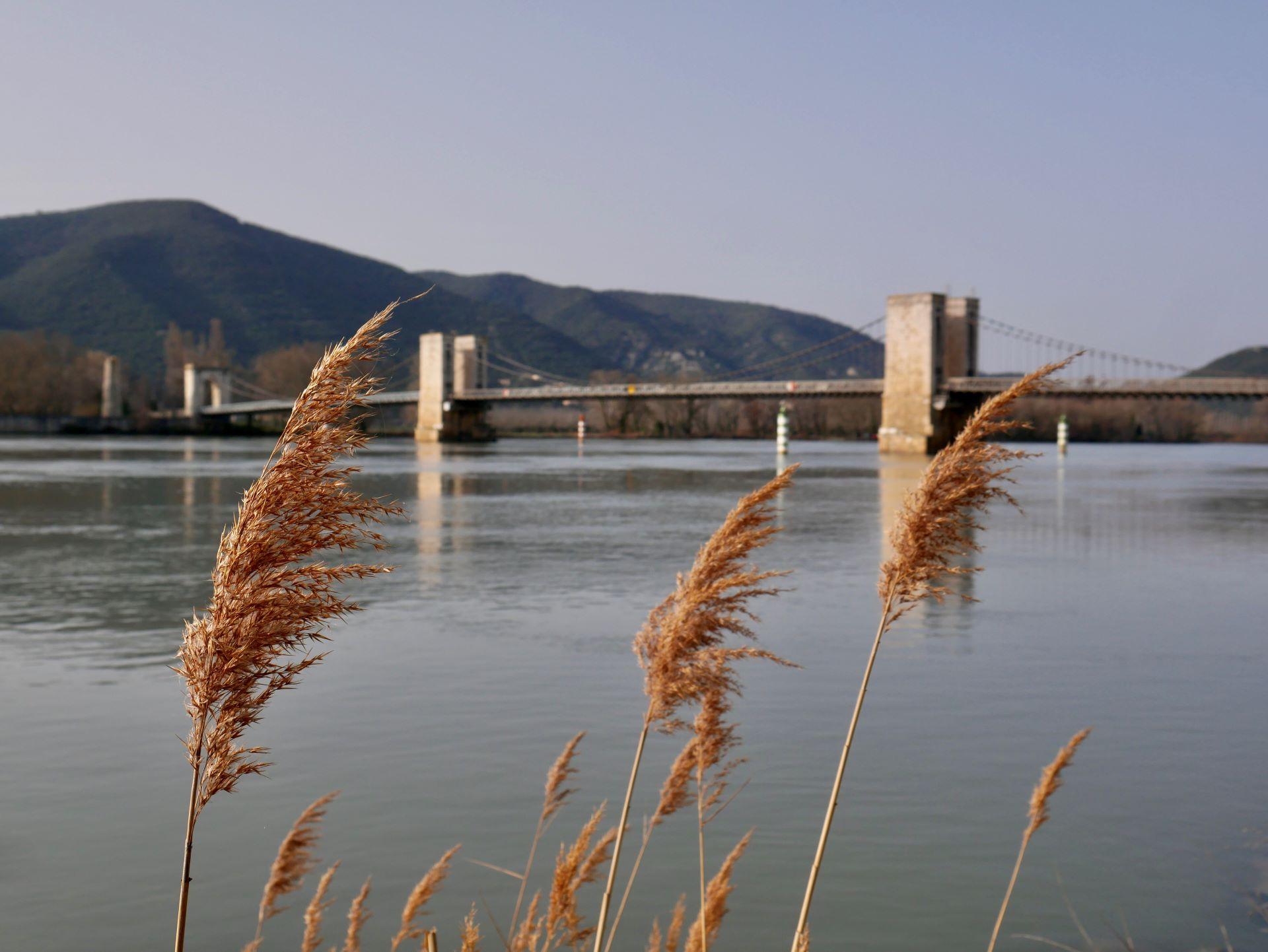 Pont du Robinet depuis les bords du Rhône