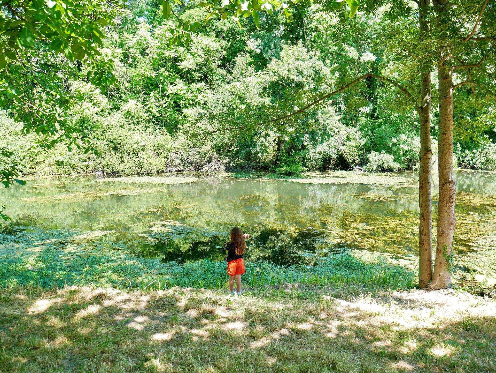 Randonnée autour de Montélimar : les îles du Rhône à Rochemaure